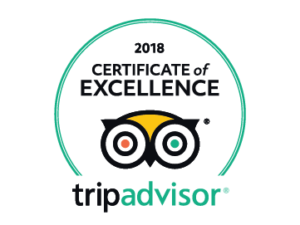 Buses Cyprus Certificate of Excellence